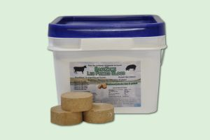 BACTZYME PREMIUM BLOCKS 50/PAIL